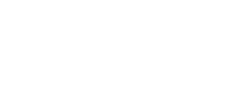 The Raif Badawi Foundation - For Freedom