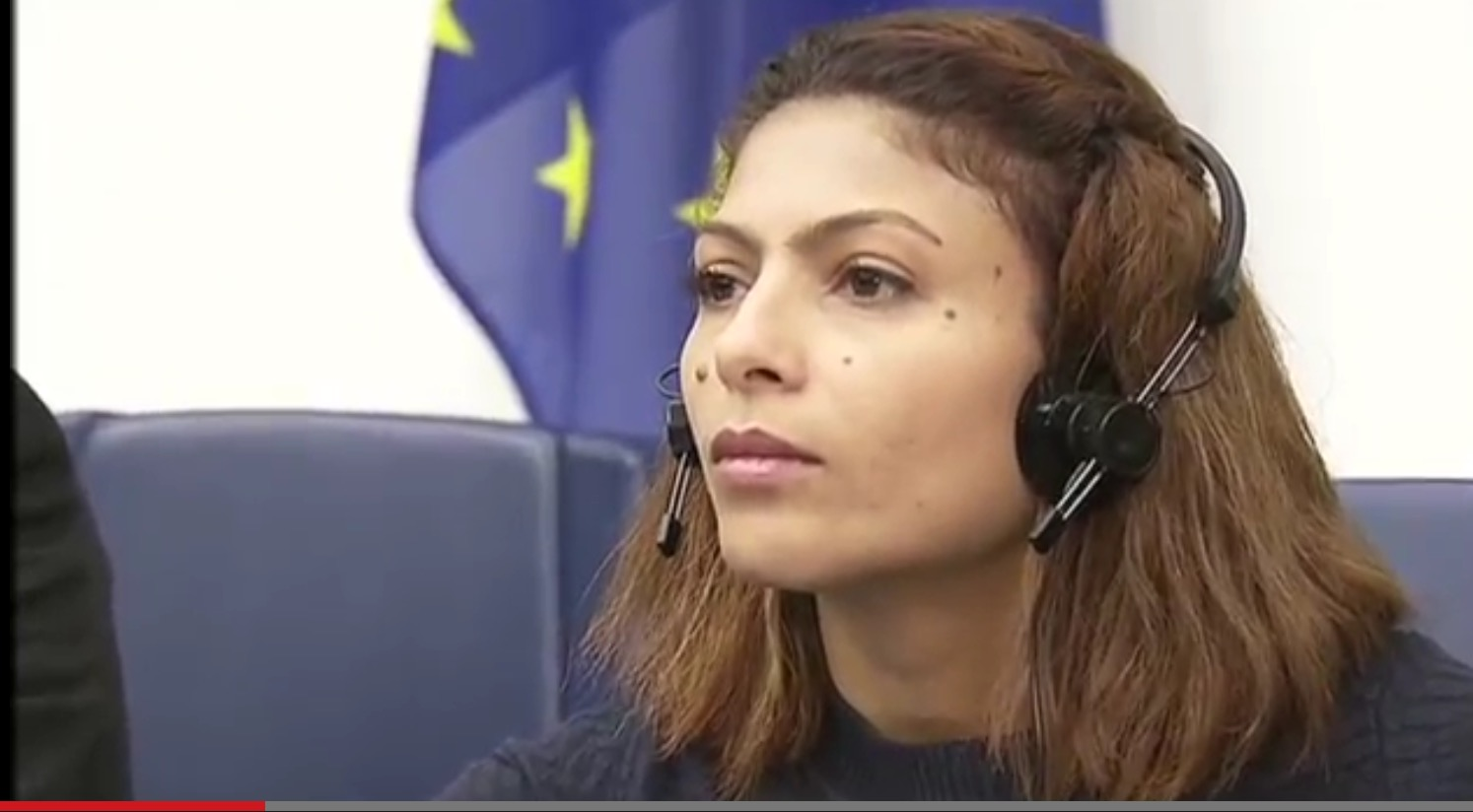 VIDEO: EU Parliament – Exchange with Ensaf Haidar, wife of Raif Badawi, Sakharov Prize 2015 (extracts)